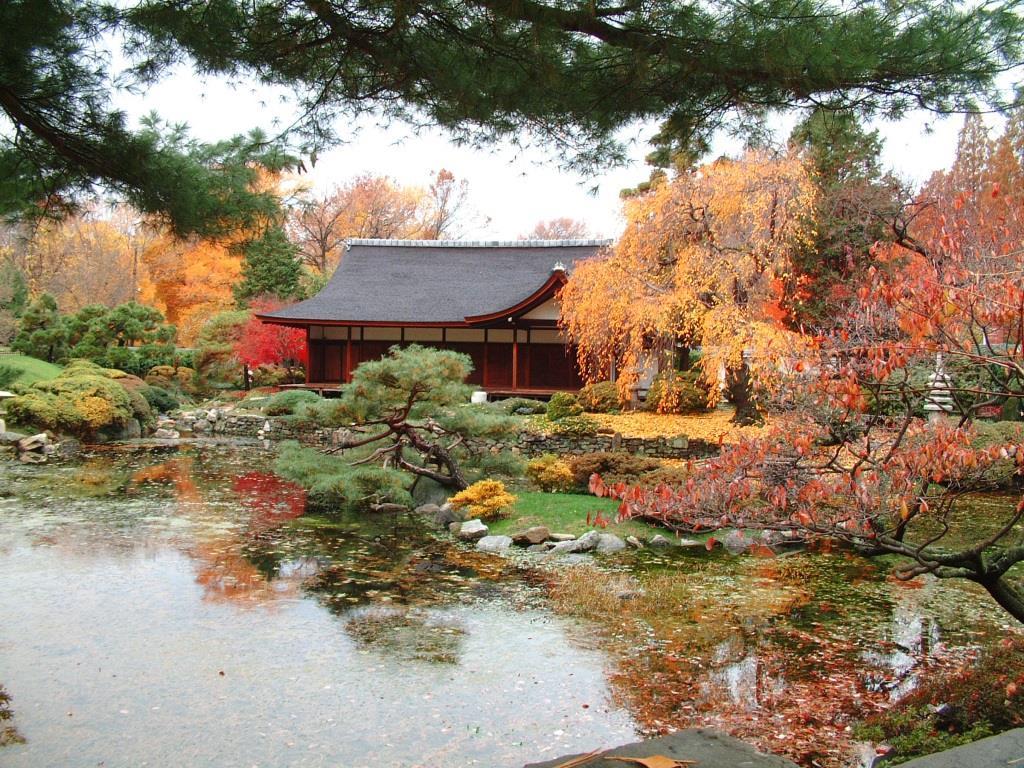 Bild japanischer Garten mit Haus und Teich